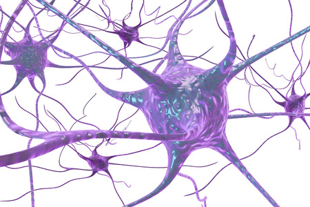 3D illustration of a neuron, brain cell, isolated on white background