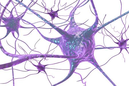 Ilustración 3D de una neurona, célula del cerebro, aislado en fondo blanco
