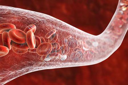 血管を流れる血液細胞、3 D イラストレーションで