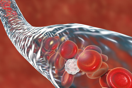 macro: Blood vessel with flowing blood cells, 3D illustration