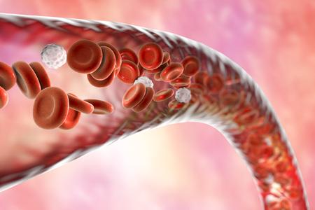 Bloedvat met stromende bloedcellen, 3D illustratie