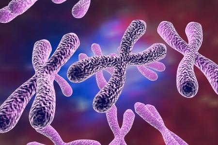 Menselijke chromosomen, 3D illustratie. Wetenschap en geneeskunde achtergrond Stockfoto