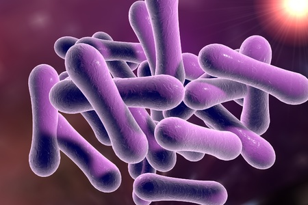 Bacteria which cause diphtheria Corynebacterium diphtheriae, 3D illustration Reklamní fotografie
