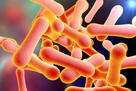Bakterien, die Diphtherie Corynebacterium diphtheriae verursachen, 3D-Darstellung Standard-Bild - 69760136