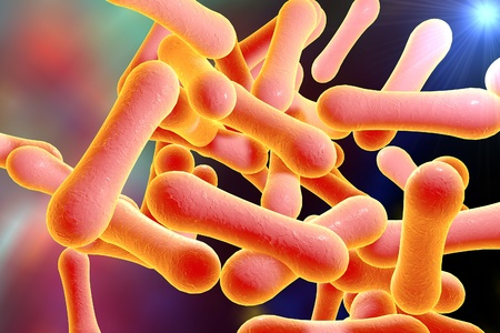 Bacteria which cause diphtheria Corynebacterium diphtheriae, 3D illustration