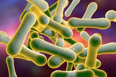 diphtheria: Bacteria which cause diphtheria Corynebacterium diphtheriae, 3D illustration