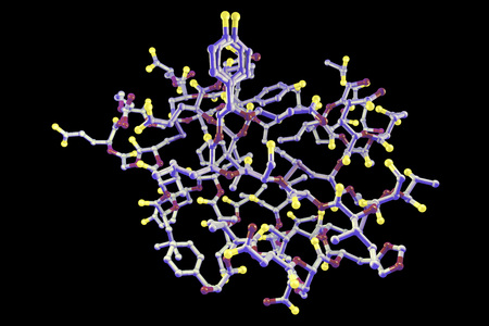 sugar metabolism: Molecular model of insulin molecule isolated on black background, 3D illustration Stock Photo