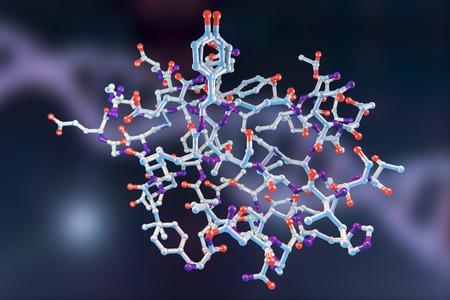 Molecular model of insulin molecule, 3D illustration Stock Photo