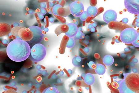 Biofilm of antibiotic resistant bacteria. Small red spheres are quorum sensing molecules used for bacterial communication inside biofilm. 3D illustration