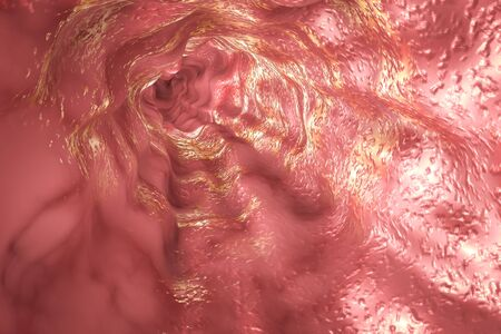 Esophagus mucosa and esophageal sphincter, 3D illustration Stock Photo