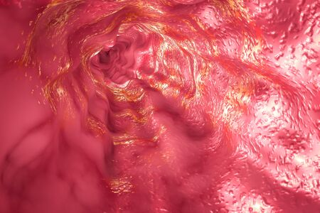 sphincter: Esophagus mucosa and esophageal sphincter, 3D illustration Stock Photo