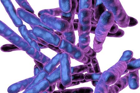 Bacteriën Bifidobacterium op een witte achtergrond, bacteriën die deel uitmaken van de normale flora van de menselijke darm worden gebruikt als probiotica en yoghurt productie. 3D illustratie