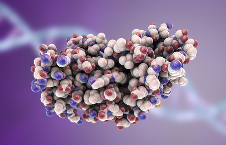 Molecular model of interferon-gamma 3D illustration. IFN-gammaa is a protein produced by leukocytes and involved in innate immune responce against viral infections Stock Photo