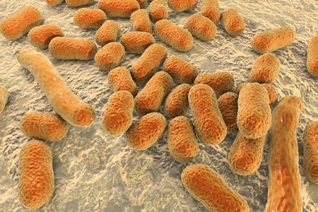 Bacterium Acinetobacter baumannii, multidrug resistant nosocomial bacterium. 3D illustration shows morphology of Acinetobacter such as short rods and sometimes long filamentous cells Stock Photo