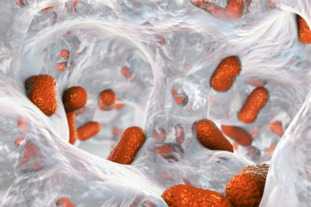 Biofilm of bacterium Acinetobacter baumannii, 3D illustration. Acinetobacter is antibiotic resistant rod-shaped bacterium which causes hospital-acquired infections Stock Photo