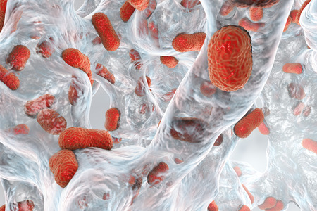 resistant: Biofilm of bacterium Acinetobacter baumannii, 3D illustration. Acinetobacter is antibiotic resistant rod-shaped bacterium which causes hospital-acquired infections Stock Photo