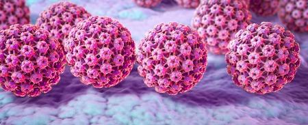 Menselijke papillomavirussen op het oppervlak van de huid of de slijmvliezen, een virus dat wratten zich voornamelijk op handen en voeten veroorzaakt. Sommige stammen infecteren de genitaliën en kan baarmoederhalskanker veroorzaken. 3D illustratie