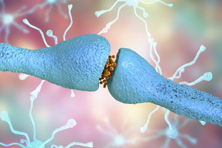 Neuronal synapses close-up view, network of neurons, brain cells. 3D illustration Stock Photo