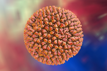 Reovirus on colorful background, 3D illustration. A virus causes infection of gastrointestinal and respiratory system Stock Photo