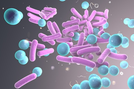 Rod-shaped and spherical bacteria on colorful background, 3D illustration Stock Photo