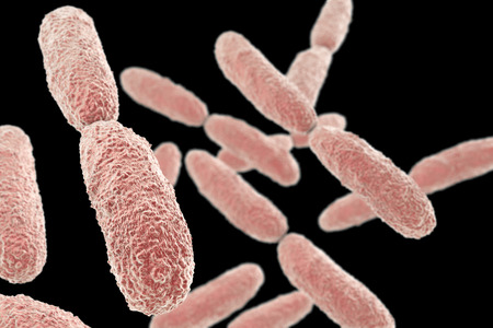 pneumoniae: Bacteria Klebsiella isolated on black background, 3D illustration. Gram-negative rod-shaped bacteria which are often nosocomial antibiotic resistant Stock Photo