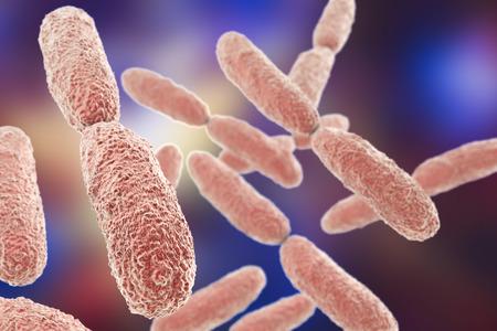 gram negative: Bacteria Klebsiella, 3D illustration. Gram-negative rod-shaped bacteria which are often nosocomial antibiotic resistant