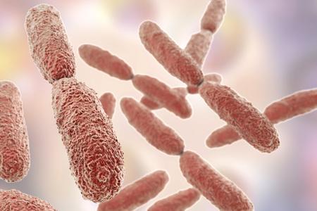 pneumoniae: Bacteria Klebsiella, 3D illustration. Gram-negative rod-shaped bacteria which are often nosocomial antibiotic resistant