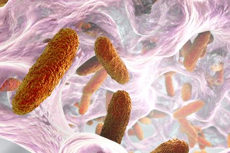 pneumoniae: Biofilm containing bacteria Klebsiella, 3D illustration. Gram-negative rod-shaped bacteria which are often nosocomial antibiotic resistant Stock Photo