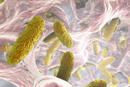 Biofilm containing bacteria Klebsiella, 3D illustration. Gram-negative rod-shaped bacteria which are often nosocomial antibiotic resistant Stock Photo