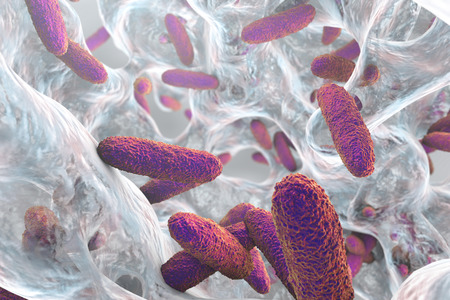 Biofilm containing bacteria Klebsiella, 3D illustration. Gram-negative rod-shaped bacteria which are often nosocomial antibiotic resistant Фото со стока