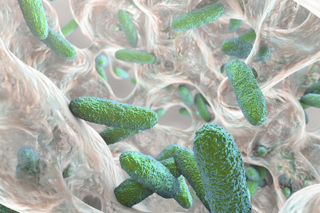 Biofilm containing bacteria Klebsiella, 3D illustration. Gram-negative rod-shaped bacteria which are often nosocomial antibiotic resistant Reklamní fotografie