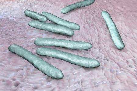 mycobacterium: Bacteria Mycobacterium tuberculosis, the causative agent of tuberculosis, 3D illustration