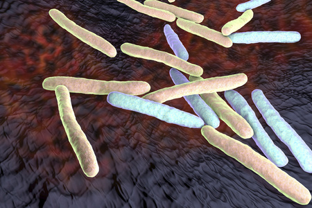 mycobacterium tuberculosis: Bacteria Mycobacterium tuberculosis, the causative agent of tuberculosis, 3D illustration