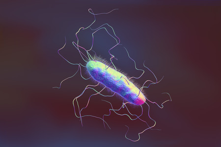 Bacterium with pilli and flagella on colorful background, 3D illustration Stock Photo
