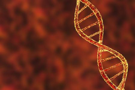 Doppelhelix von DNA . Wissenschaft Hintergrund . 3D-Darstellung Standard-Bild - 80064294
