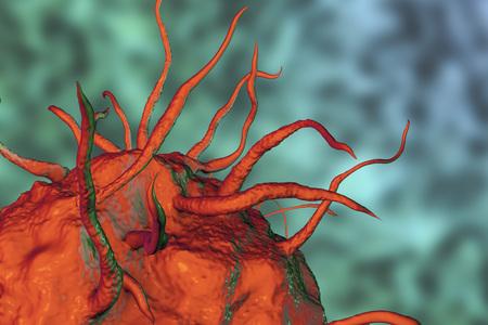 マクロファージ細胞、単球、免疫細胞、3 D イラストレーションのクローズ アップ ビュー