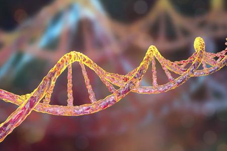 DNA の二重らせん。サイエンスの背景。3 D イラストレーション