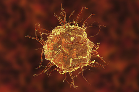 Macrophage cell, monocyte, close-up view of immune cell, 3D illustration