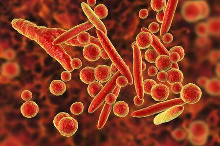 Mycoplasma Bakterien, 3D-Darstellung zeigt kleine polymorphe Bakterien, die Lungenentzündung, Genital-und Harn-Infektionen verursachen Standard-Bild - 80398596