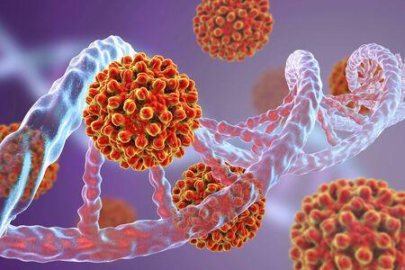 hbv: Heptitis B viruses and DNA molecule, 3D illustration. Medical background Stock Photo