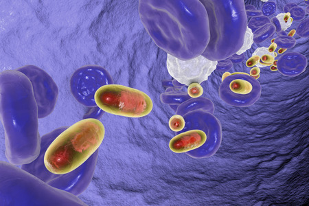 Delivery of medicines inside polymer nanoparticles, conceptual image. 3D illustration Stock Photo
