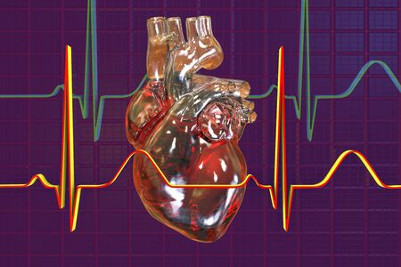 Human heart on background with ECG, 3D illustration