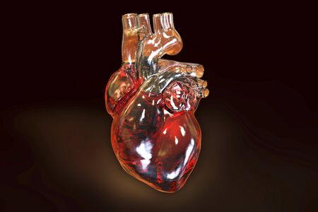 Human heart on dark background, 3D illustration