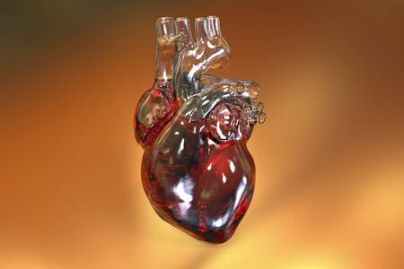 Human heart on colorful background, 3D illustration
