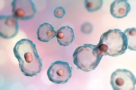 Dividing cells on colorful background, 3D illustration Stockfoto