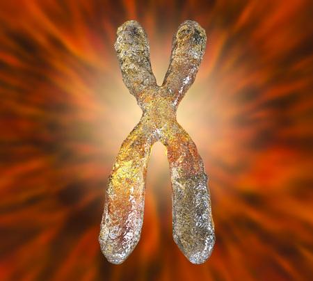 Human chromosome highly detailed on colorful background, 3D illustration Banco de Imagens