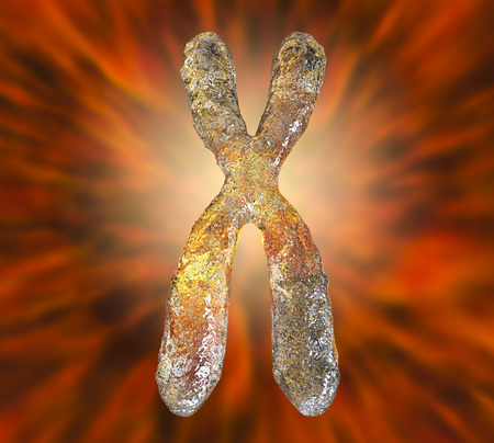 Human chromosome highly detailed on colorful background, 3D illustration Stock Photo