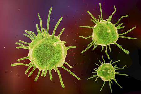 Parasites, human pathogenic microbes on colorful background. 3D illustration Stock Photo