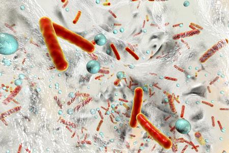 Batteri resistenti agli antibiotici all'interno di un biofilm, illustrazione 3D. Sfondo scientifico realistico