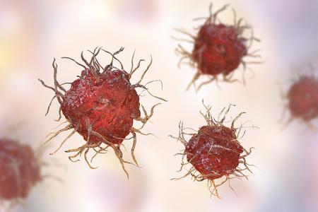 수지상 세포, 항원 제시 면역 세포, 3D 일러스트